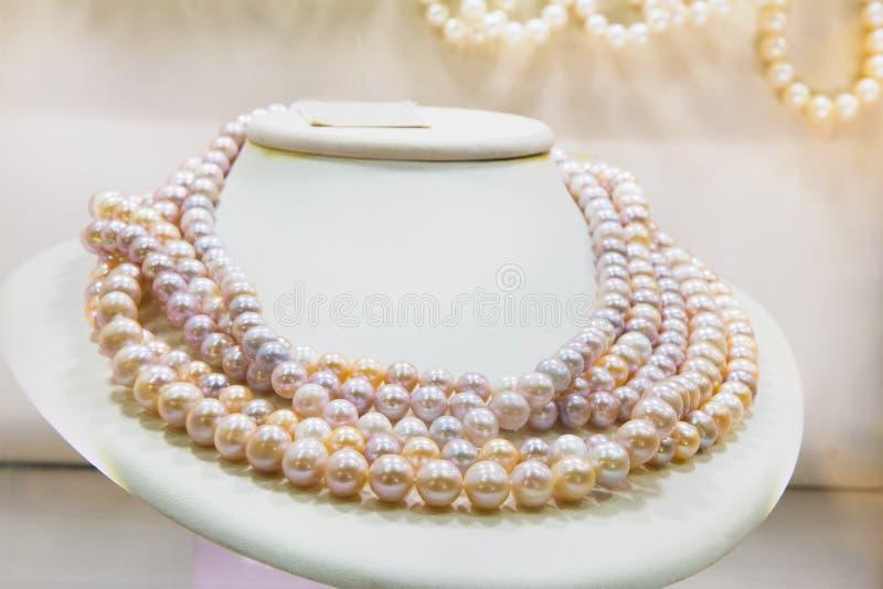 dew morning necklace pearl web στοκ εικόνες