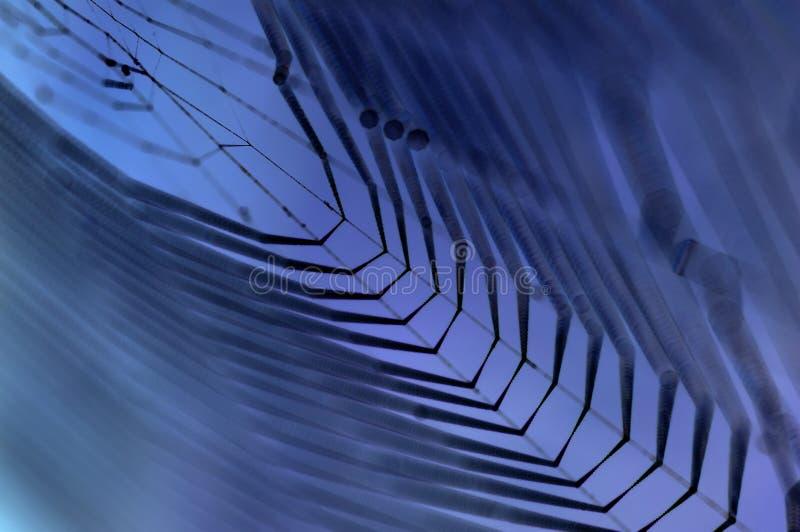 Dewy Spinnennetz im Blau lizenzfreie stockfotos