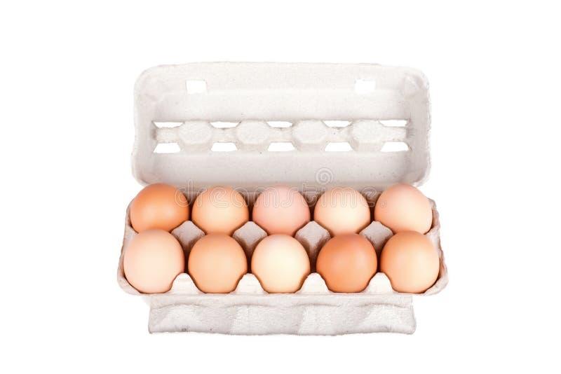 Dez ovos em um pacote da caixa isolado fotografia de stock royalty free