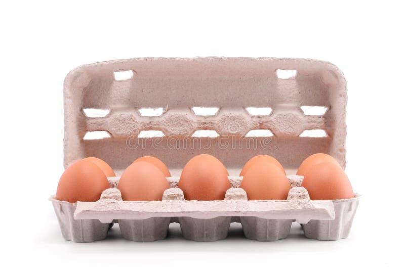Dez ovos frescos em um pacote da caixa imagem de stock