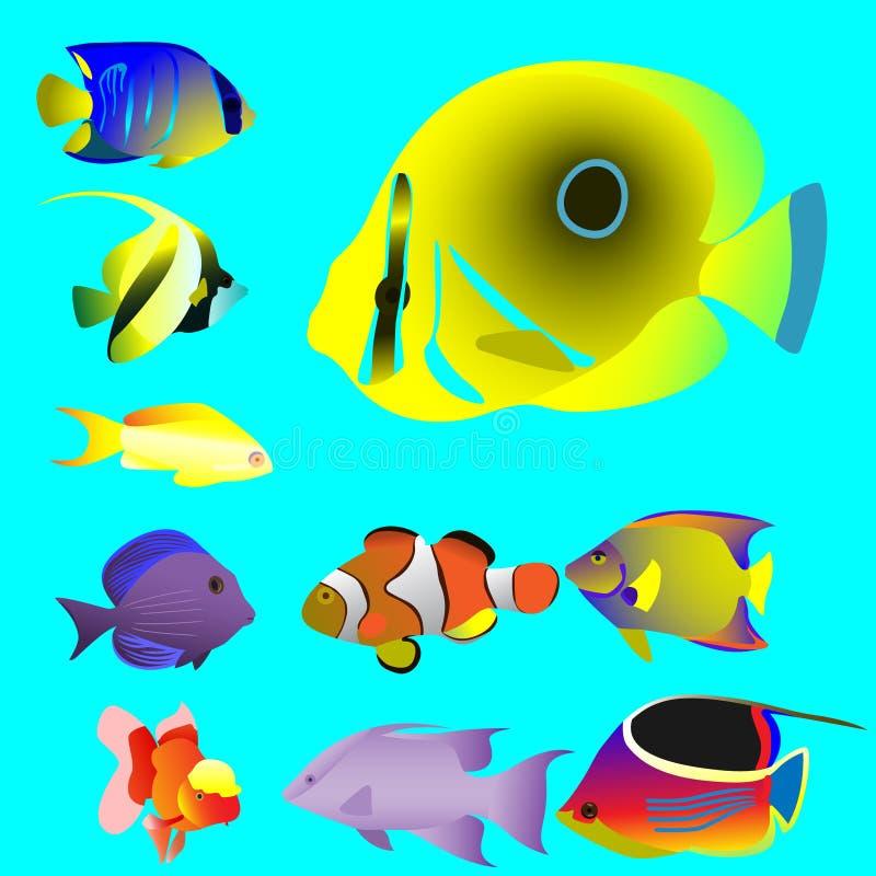 Dez peixes pequenos oceânicos brilhantes ilustração do vetor