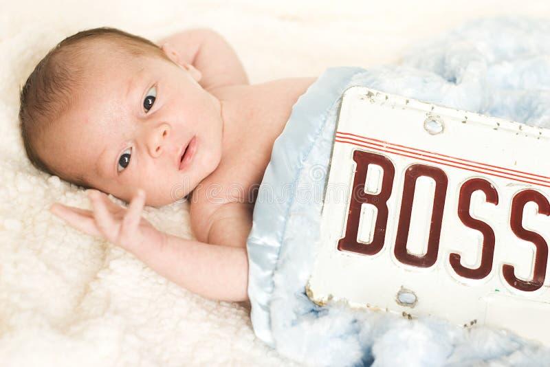 Deze Baby is Chef-! Leuk Kind dat Vingers bekijkt stock afbeeldingen