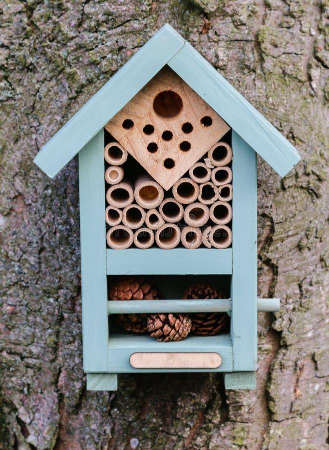 Deze bijendoos beschermt het overwinteren solitaire bijen stock afbeelding