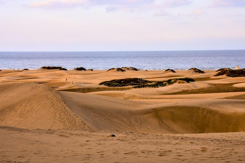 Dezerteruje z piasek diunami w Granie Canaria Hiszpania zdjęcie stock