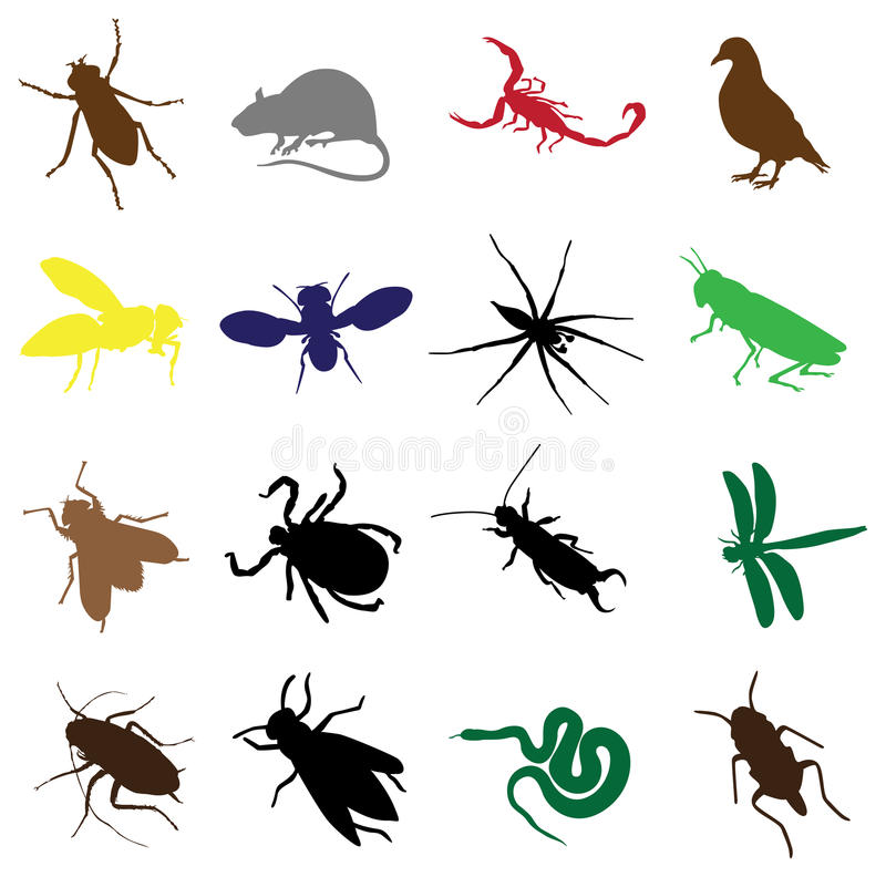 Dezesseis insetos e roedores ilustração do vetor