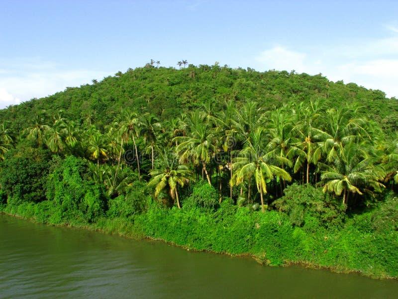 dhamapur ΙΙΙ λίμνη στοκ εικόνα