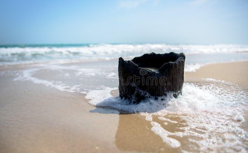 Dhanushkodi strand royaltyfria bilder