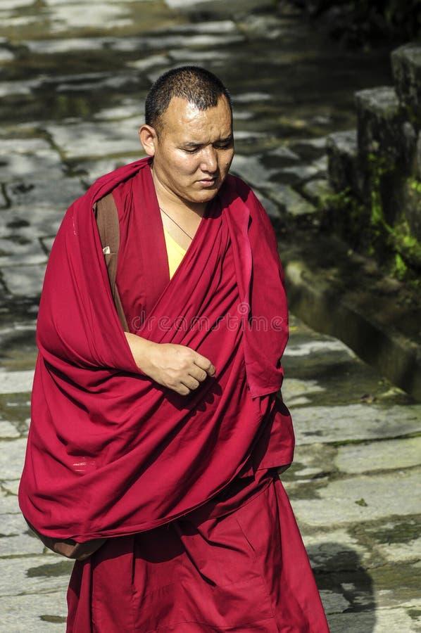 Dharamsala, India, il 6 settembre 2010: Monaco tibetano che cammina nel TR fotografie stock