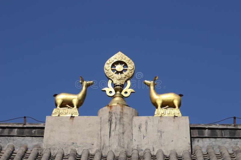 dharma στοκ φωτογραφία με δικαίωμα ελεύθερης χρήσης