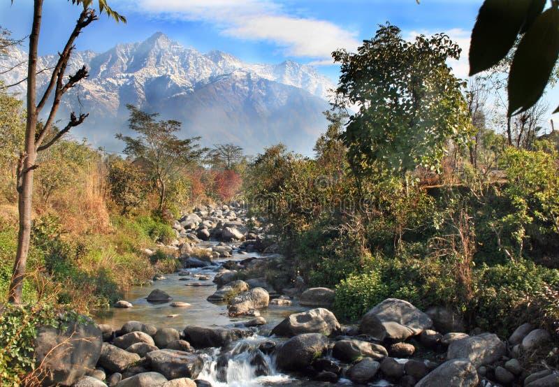 dhauladhar喜马拉雅印度山脉 免版税库存照片