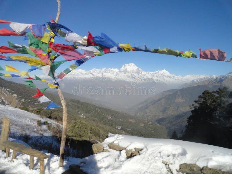 Dhaulagiri område, Himalayas från Poon Hill Nepal arkivbilder