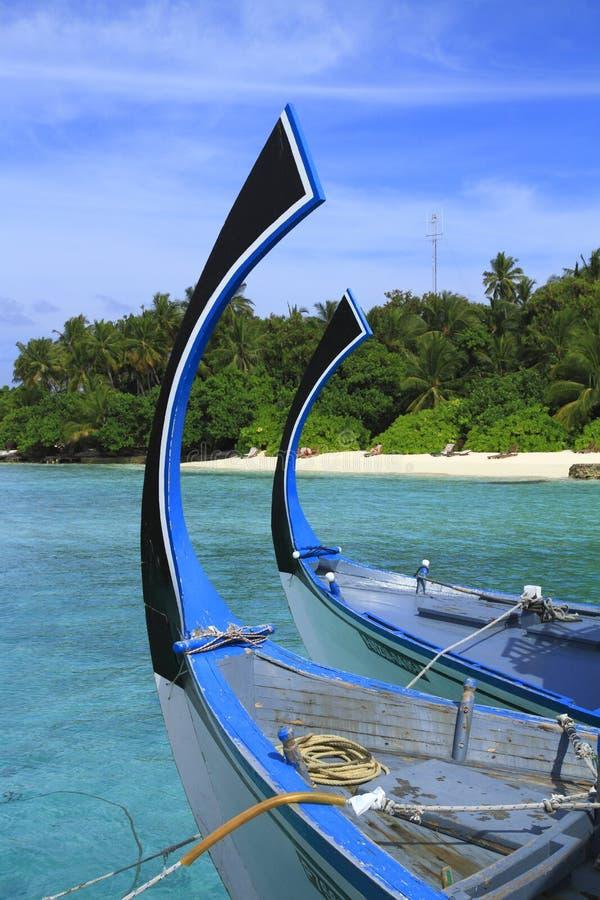 Download Dhoni stock image. Image of bathing, oasis, fishing, palm - 32902109