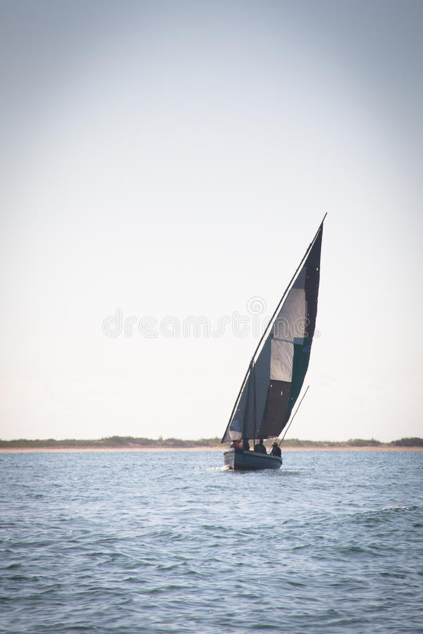 Dhows at the coast of Barra near Tofo. Typical boats called dhows near the coast of Barra and Praia do Tofo in Inhambane, Mozambique royalty free stock images