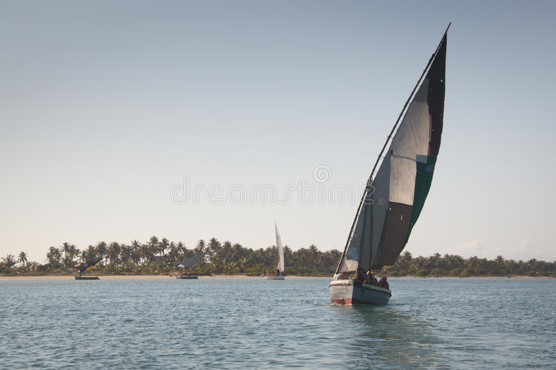 Dhows at the coast of Barra near Tofo. Typical boats called dhows near the coast of Barra and Praia do Tofo in Inhambane, Mozambique stock photography