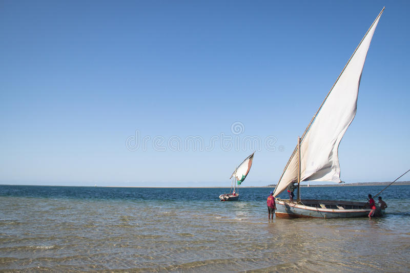 Dhows at the coast of Barra near Tofo. Typical boats called dhows near the coast of Barra and Praia do Tofo in Inhambane, Mozambique royalty free stock image