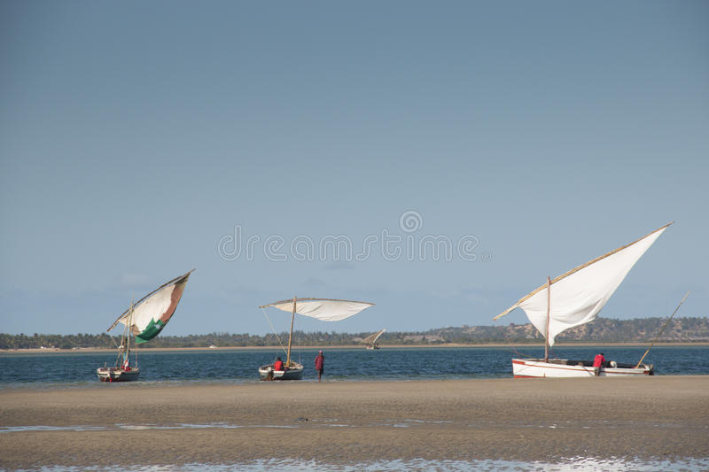 Dhows at the coast of Barra near Tofo. Typical boats called dhows near the coast of Barra and Praia do Tofo in Inhambane, Mozambique stock photos