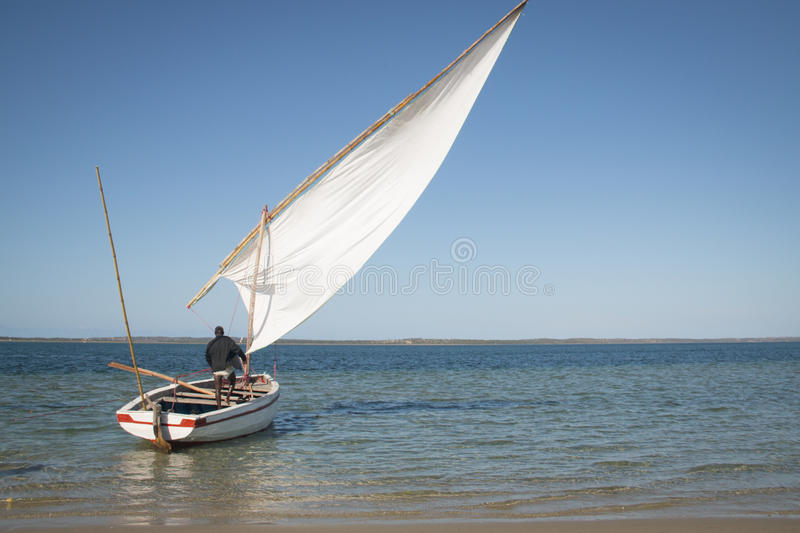 Dhows at the coast of Barra near Tofo. Typical boats called dhows near the coast of Barra and Praia do Tofo in Inhambane, Mozambique royalty free stock photo