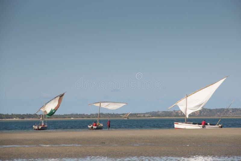 Dhows en la costa de Barra cerca de Tofo fotos de archivo
