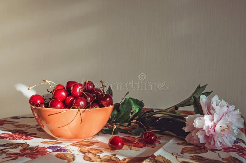 Di arti, composizione con un fiore rosa fresco della peonia, ciliege rosse in natura morta di marsala sulla tovaglia dell'annata  fotografia stock libera da diritti