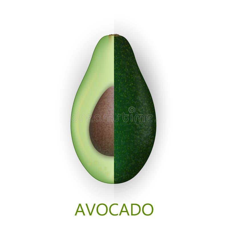 Di avocado realistico 3d isolato su fondo bianco Pezzi tagliati di avocado con il seme royalty illustrazione gratis
