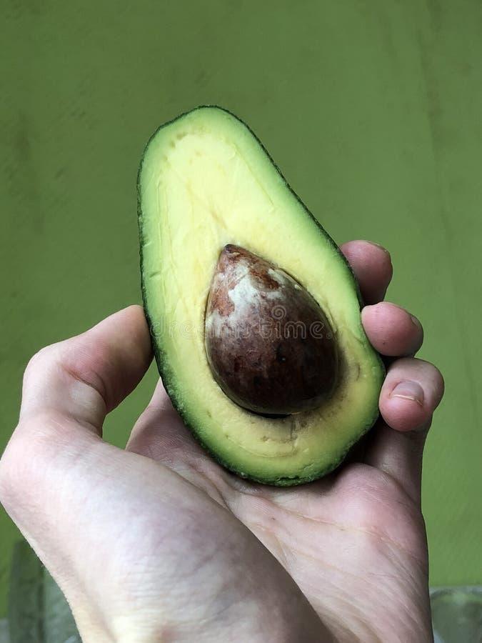 Di avocado verde fotografia stock