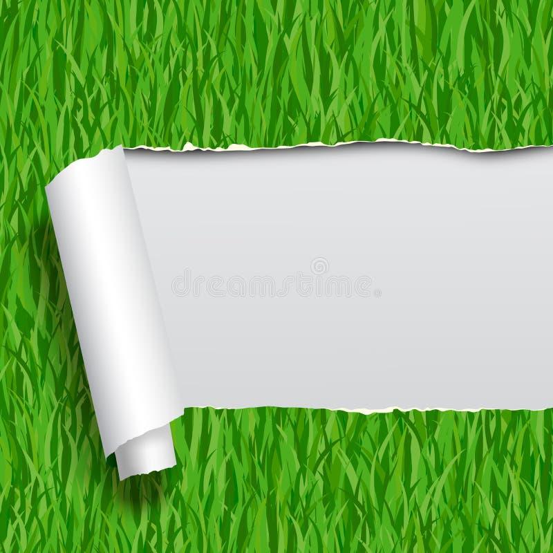 Di carta strappato con il fondo senza cuciture del modello dell'erba verde illustrazione di stock