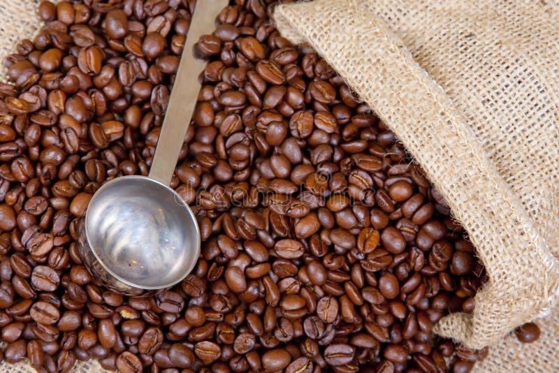 Di dosatore del caffè fotografia stock
