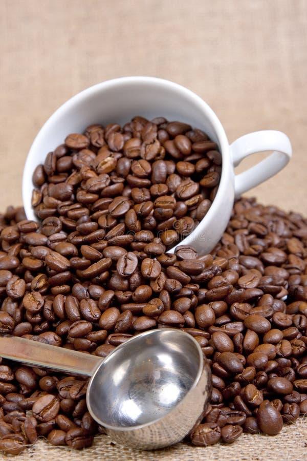 Di dosatore del caffè fotografia stock libera da diritti