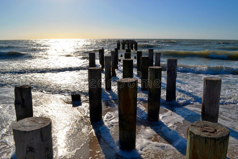 Di legno collega la riva dell'oceano fotografia stock