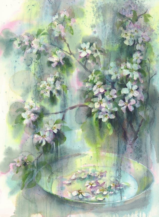 Di melo fiorisce l'acquerello della pioggia illustrazione vettoriale