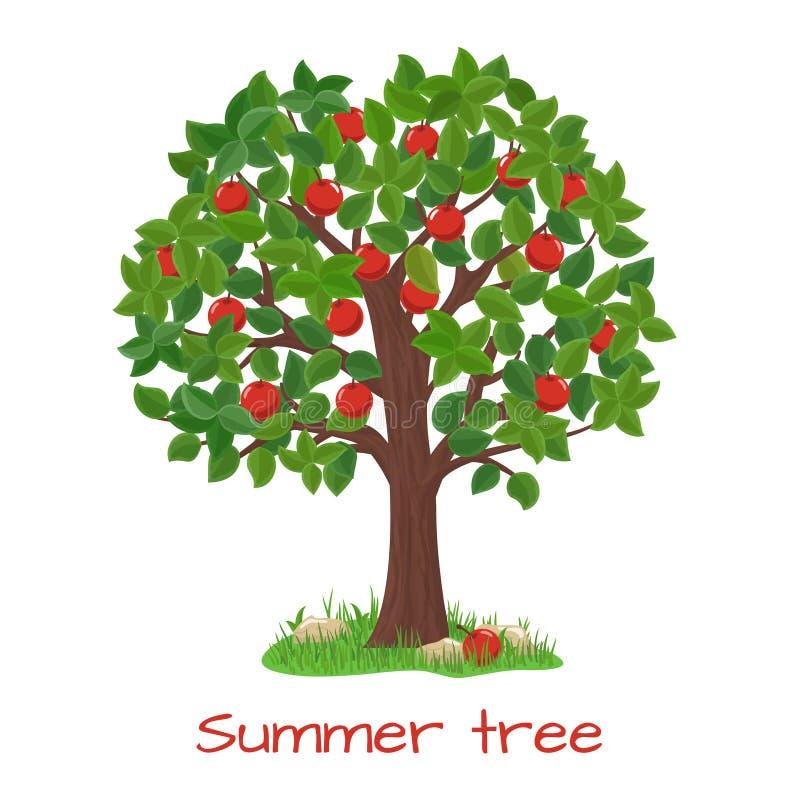 Di melo verde Vettore dell'albero di estate illustrazione vettoriale