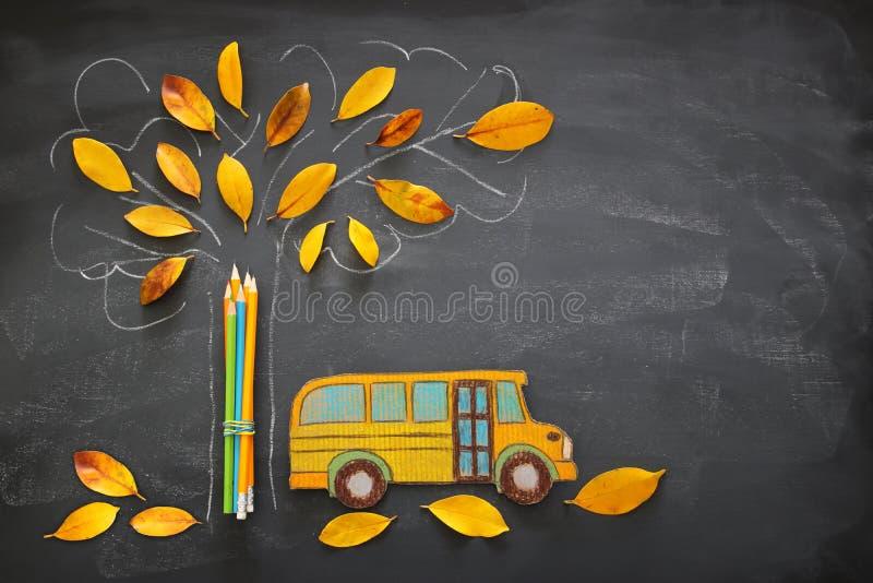 Di nuovo al concetto del banco L'immagine di vista superiore dello scuolabus e delle matite accanto allo schizzo dell'albero con  immagine stock libera da diritti
