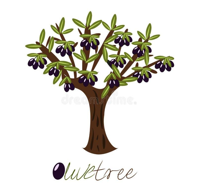 Di olivo illustrazione di stock