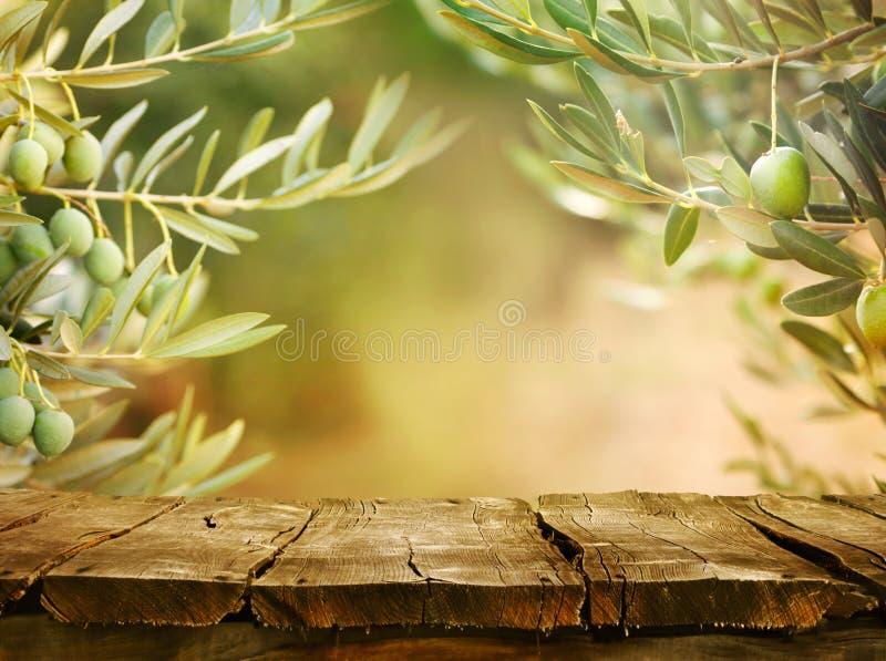 Di olivo con il ripiano del tavolo fotografia stock libera da diritti