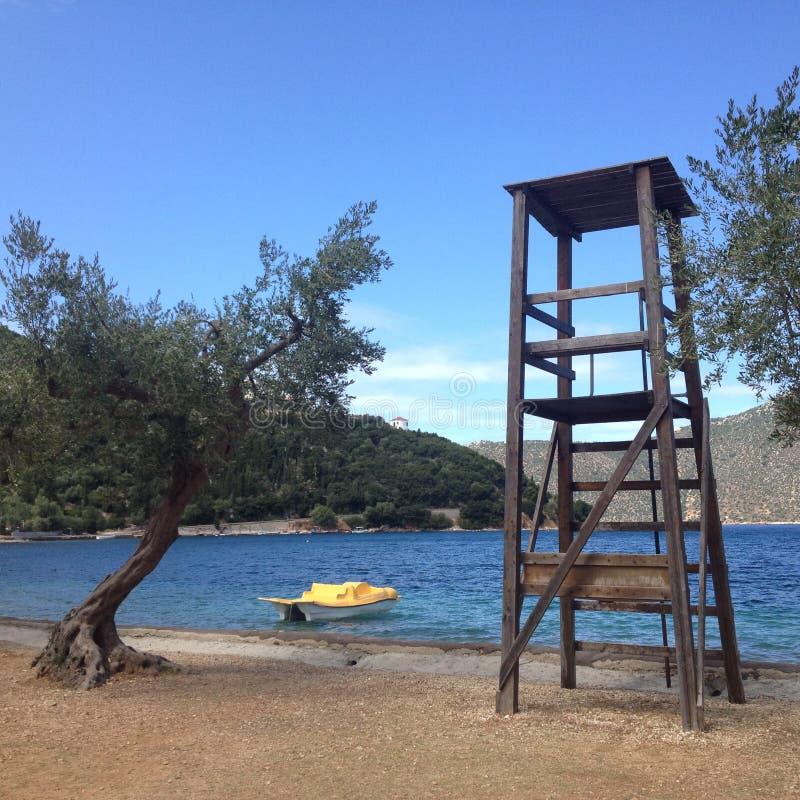 Di olivo dal mare, isole della Grecia fotografia stock