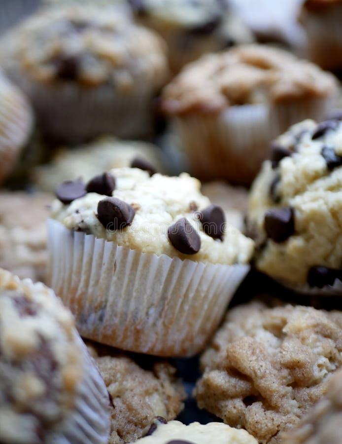 Di pepita di cioccolato del muffin fine su fotografia stock
