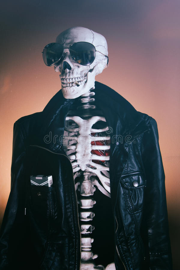 Di scheletro freschi lisciano fotografia stock