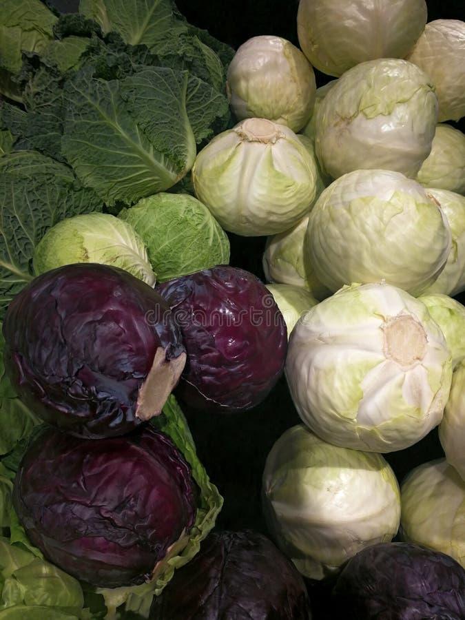 Di verdure - cavolo bianco del cavolo rosso e cavolo immagini stock