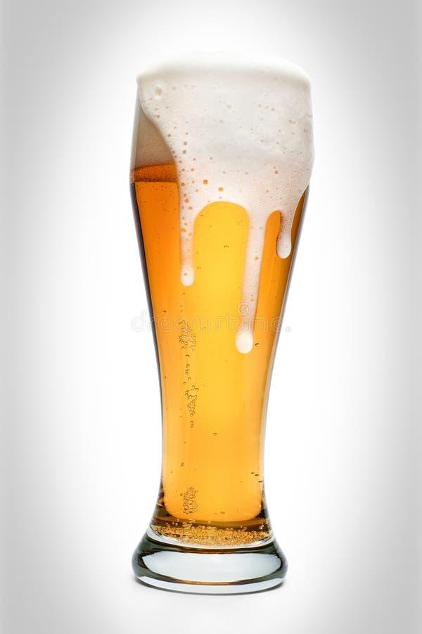 Di vetro in pieno di birra ambrata isolata immagini stock