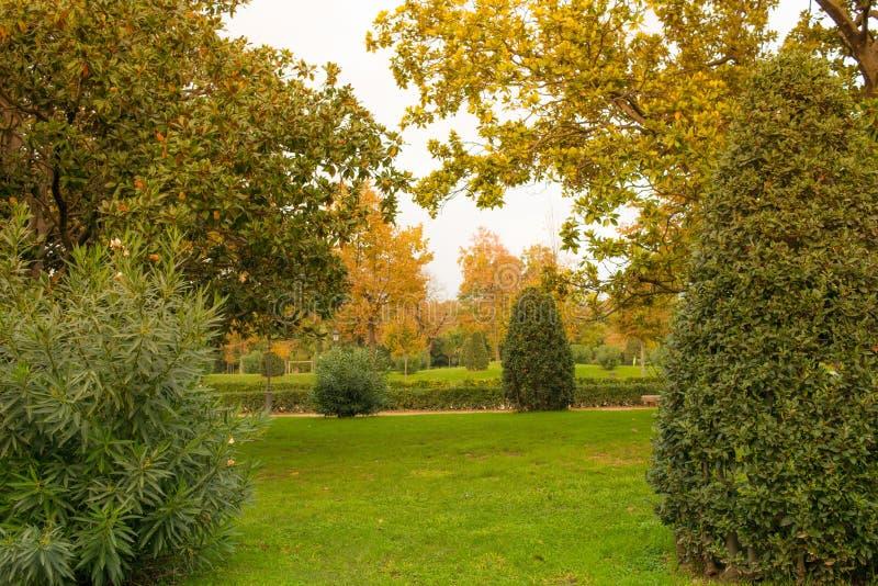 Download Parque bonito foto de stock. Imagem de brilhante, fresco - 29832254