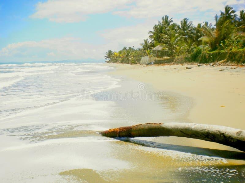 Dia bonito na praia imagens de stock royalty free