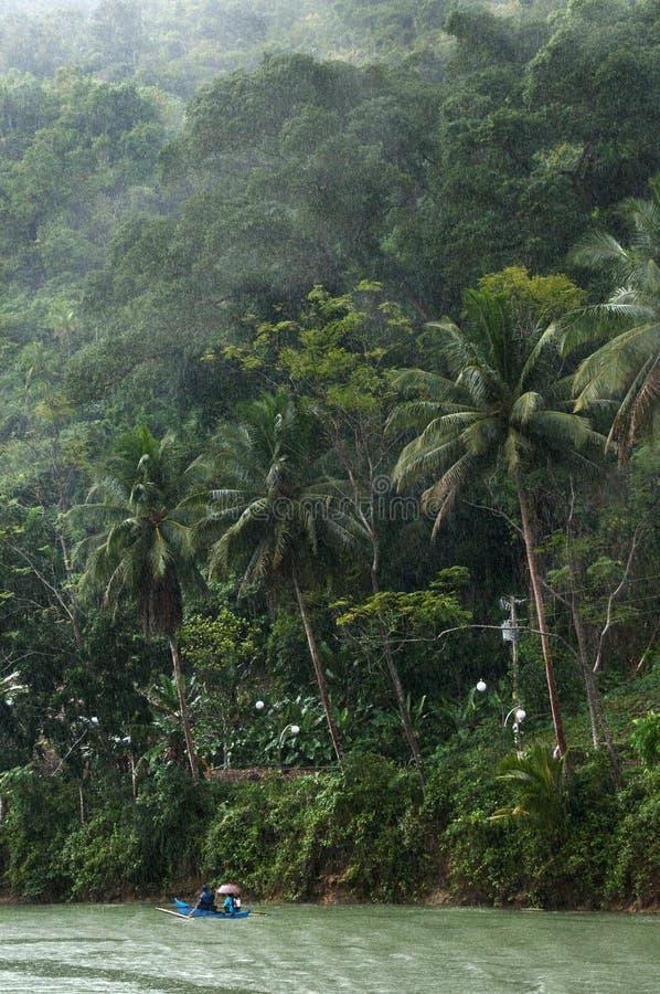 Dia chuvoso da floresta húmida imagem de stock royalty free