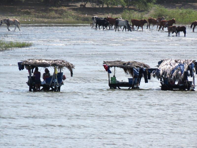 Dia da lavanderia em Lago Cocibolca Nicarágua fotografia de stock royalty free