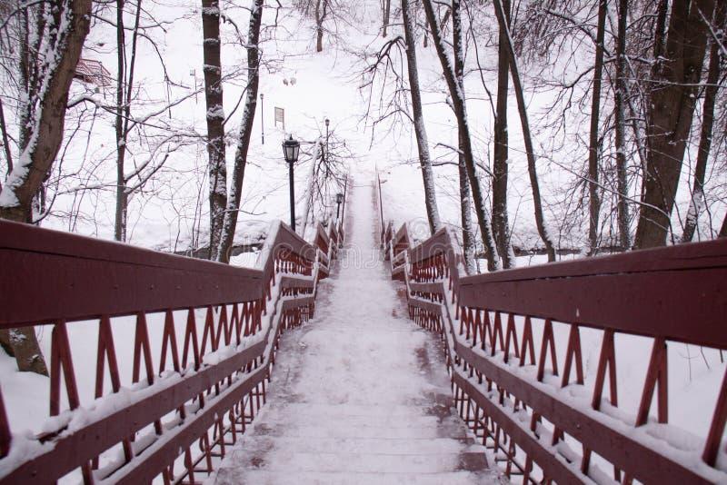Dia da neve do inverno de Moscou Rússia em um parque da cidade fotos de stock royalty free