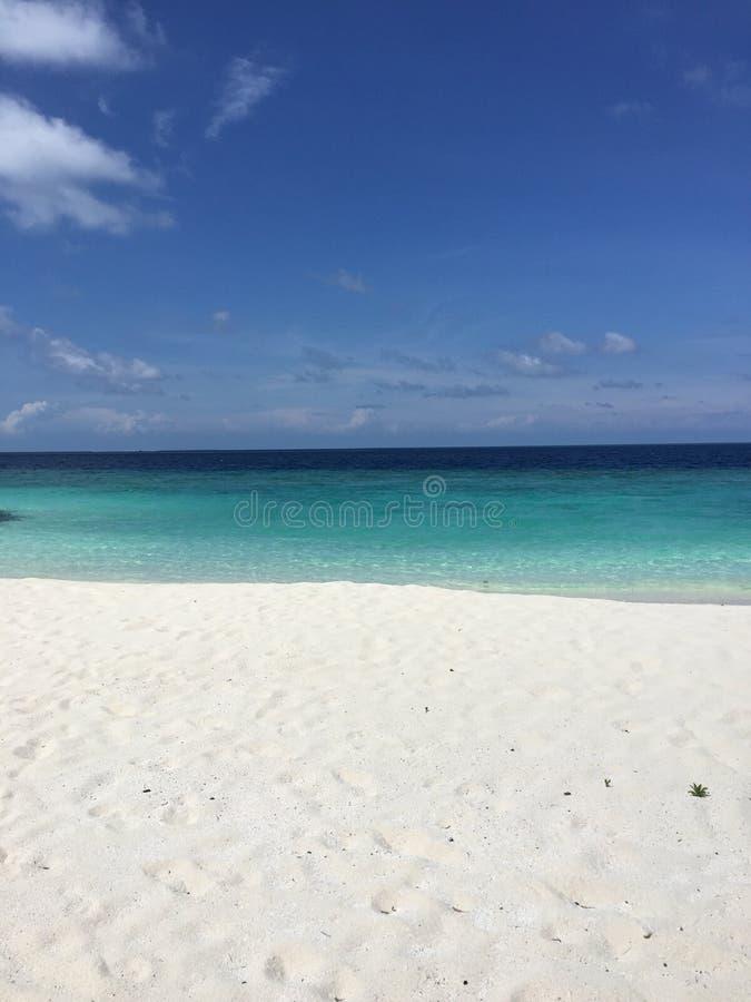 Dia da praia fotos de stock royalty free
