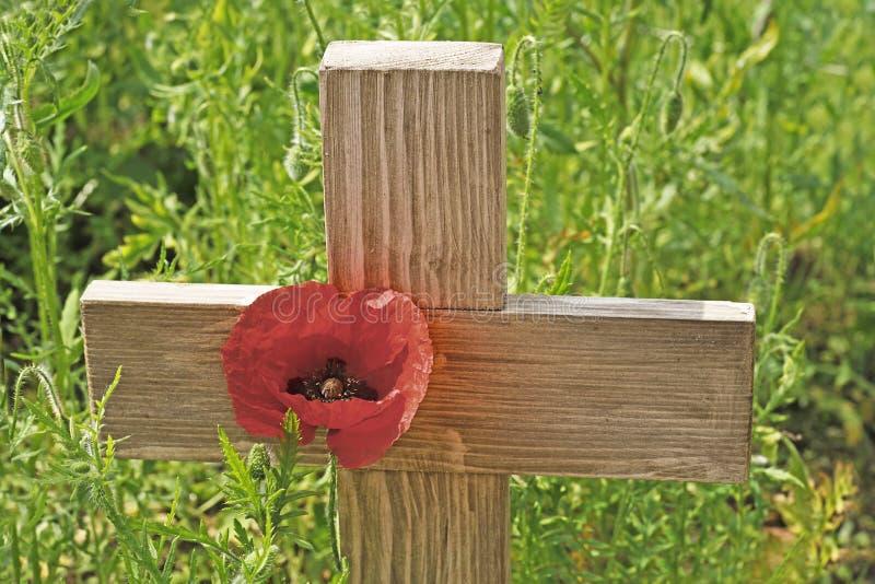 Dia da relembrança uma papoila e uma cruz de madeira fotografia de stock
