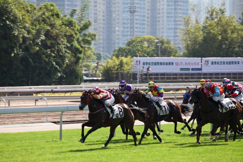 Dia de competência de Horce em Hong Kong foto de stock