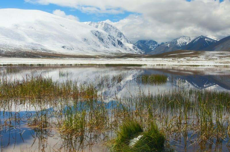 Dia de inverno do lago mountain imagens de stock royalty free
