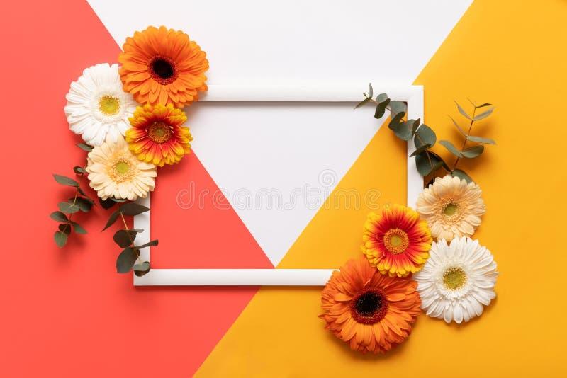 Dia de mães feliz, dia das mulheres, dia de Valentim ou aniversário que vivem Coral Pantone Color Background Cartão colocado liso foto de stock