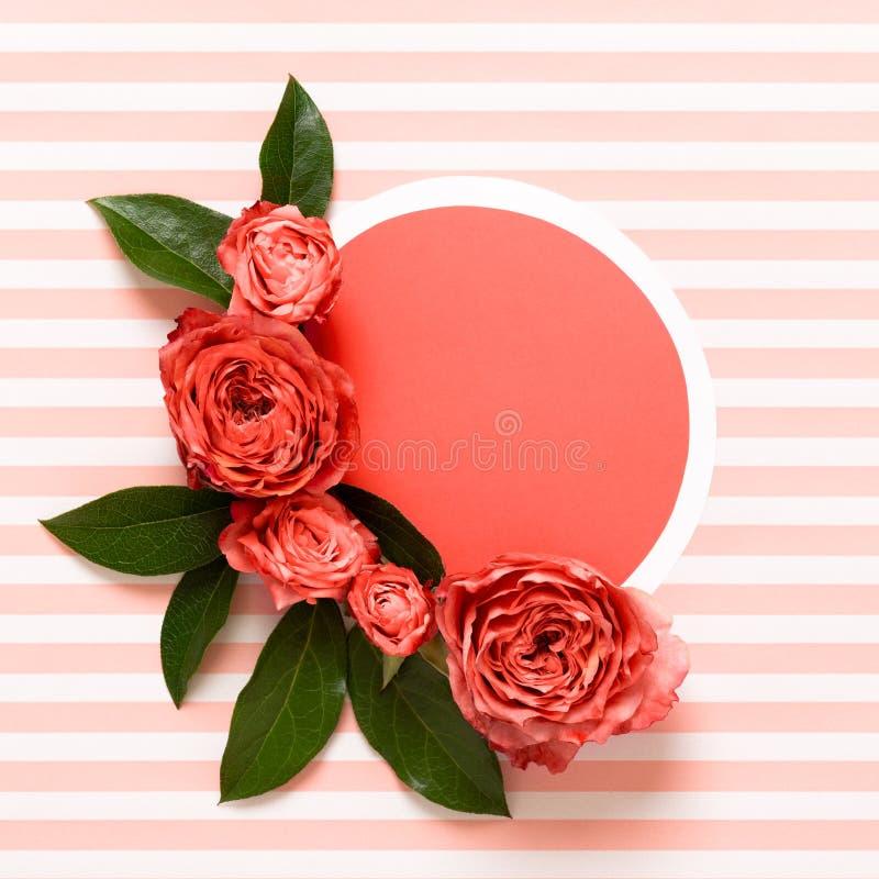 Dia de mães feliz, dia das mulheres, dia de Valentim ou aniversário que vivem Coral Pantone Color Background Cartão colocado liso fotografia de stock royalty free